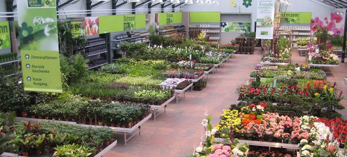 Overzicht van tuincentra